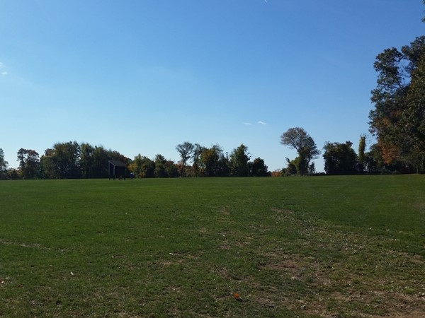 Chester's biggest park, Chubb Park, is the site of many of the year's largest events