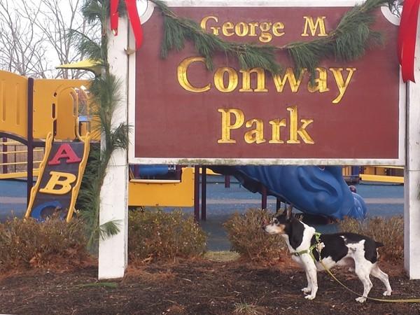 Conway Park along Parker Road Park