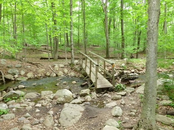 Ramapo Valley Reservation - wooden bridges to help cross the streams