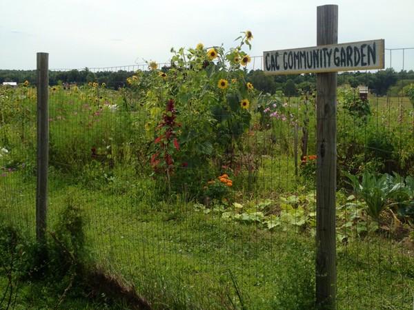 Benedict Farm Community Garden