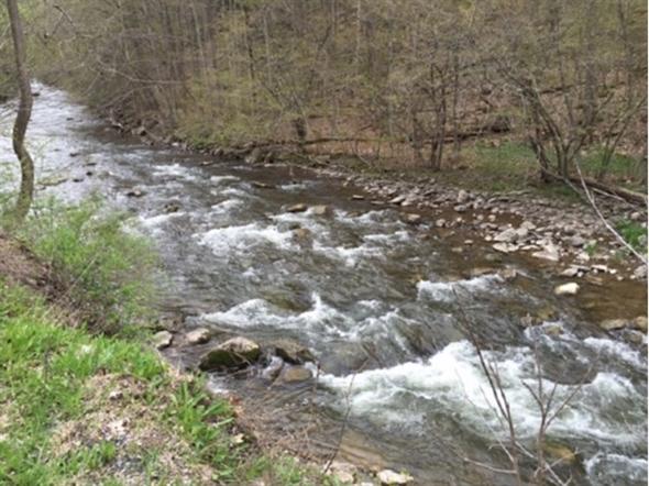 Chittenango Creek just north of the Falls; ready for fishing season
