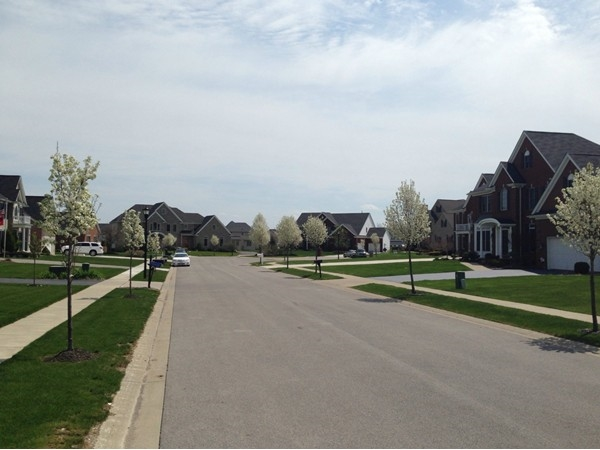Blossoming to beauty in Lake Forest Estates