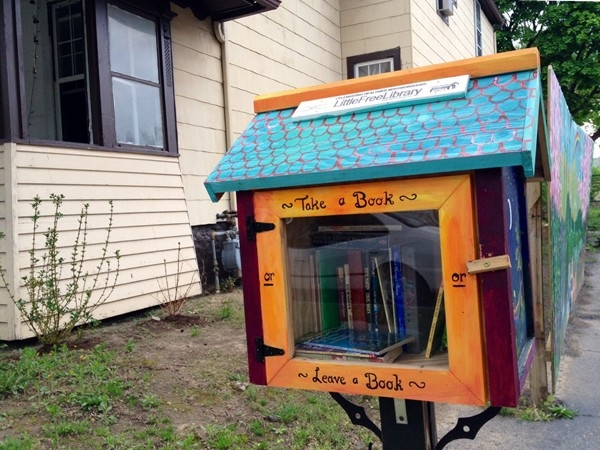 "The ""Little Free Library"" Program in Southeast Rochester"