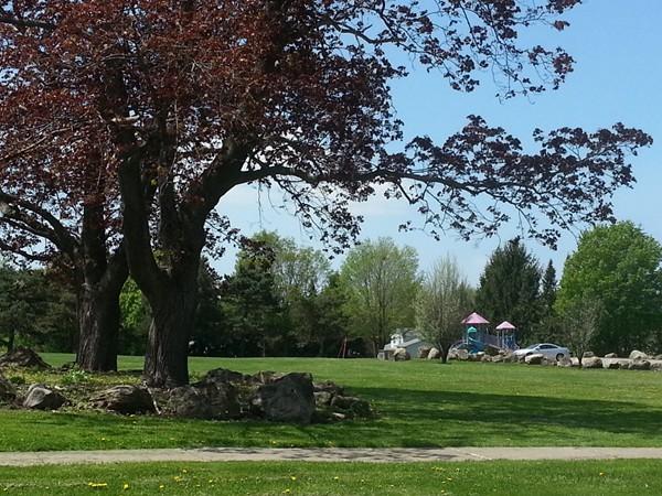 Greenwood Park playground