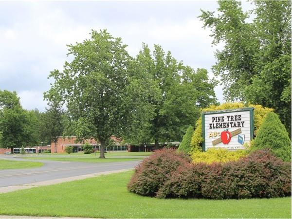 Pine Tree Elementary