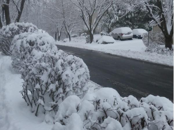 Winter wonderland in Woodbury Heights.