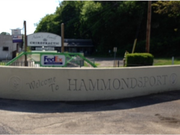 Hammondsport by Keuka Lake