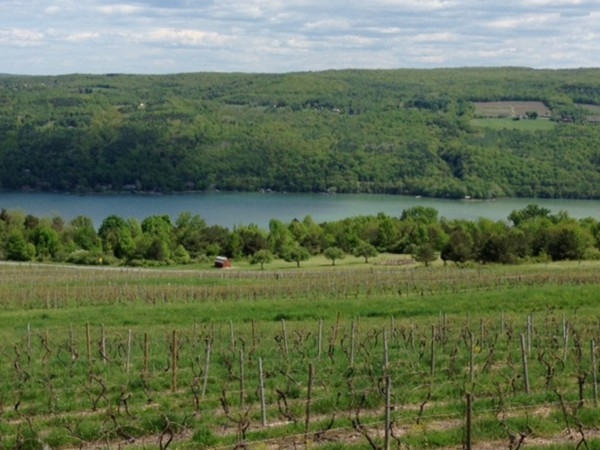 Keuka Lake and Bully Hill Vineyard