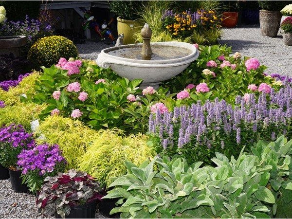 Eastland Farm is the place to buy everything for a landscape design