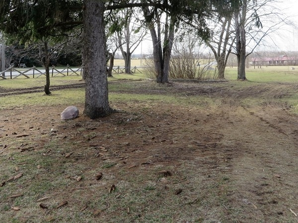 59 acre property on Route 96 two miles east of the Finger Lakes Racetrack
