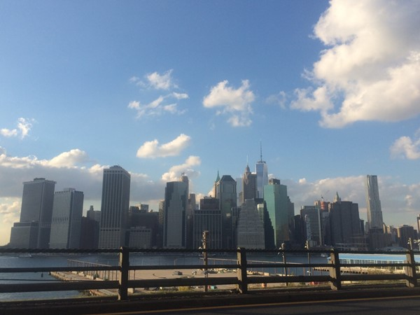 The view of Lower Manhattan and the new Freedom Tower from Brooklyn Heights