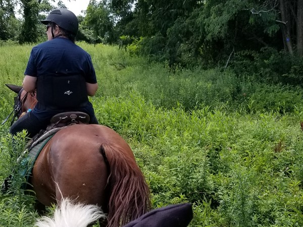Trail riding in Stewart State Forest