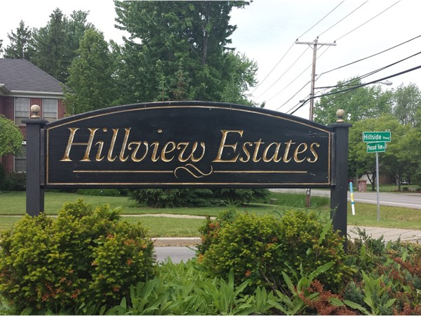 Popular streets in this subdivision are Hillside Pkwy, Pondside Ct, Hillvalley Dr and Rehm Rd