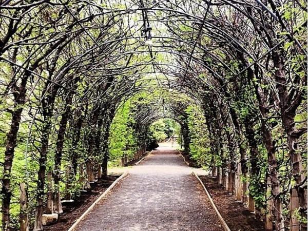 Beautiful Snug Harbor Cultural Center & Botanical Garden, Staten Island