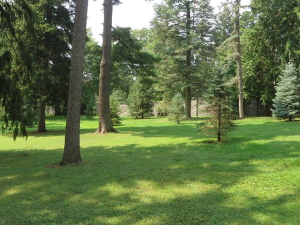 Beautiful wooded area near the Japanese Garden in the Sonnenberg Gardens