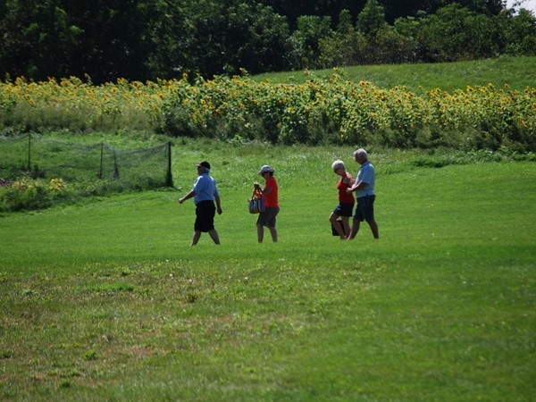 Visitors to the Vineyard