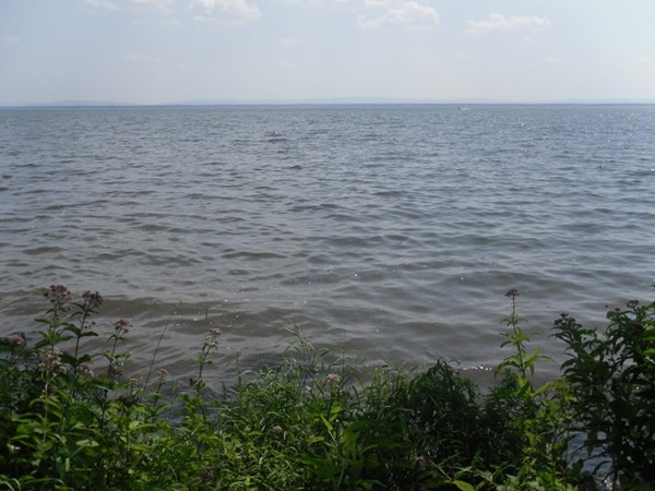 Oneida Lake in Constantia