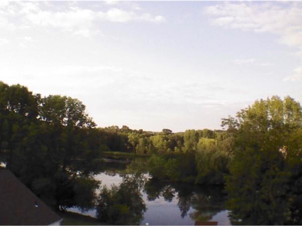 Pond in Windridge