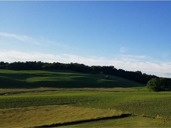 Rolling hills of farmland off Hortons Rd