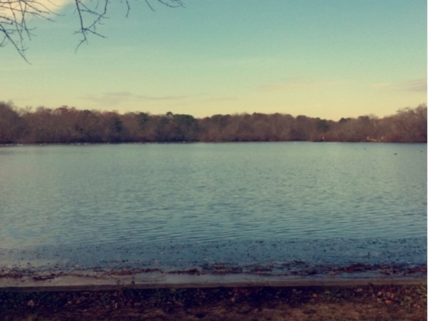 Beautiful scenery at Belmont State Park