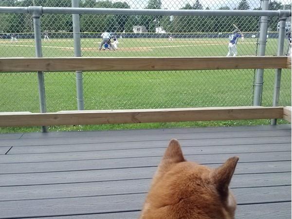 We love baseball games at East Side Rec Park!