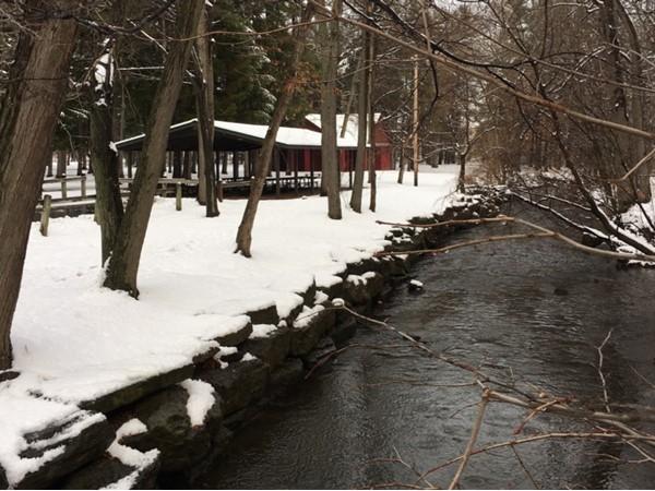 Fresh snow in Sawyer Park