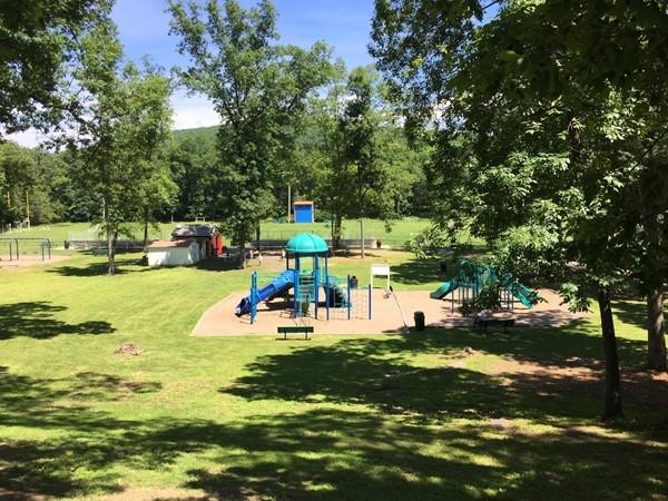 Chester Commons playground