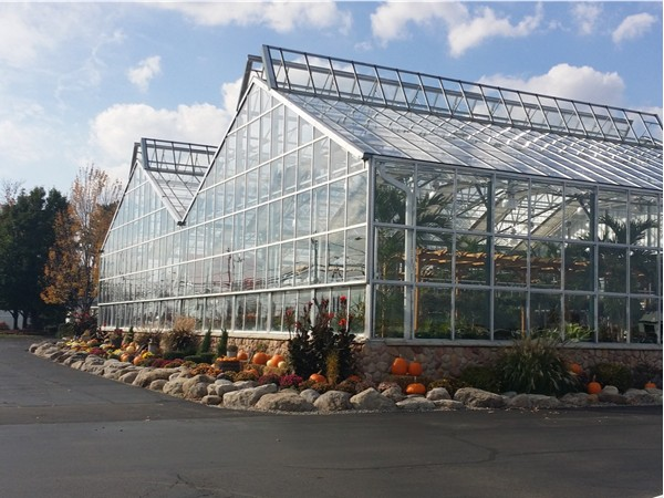 Sun shining brightly on greenhouse at Garden Factory in Gates