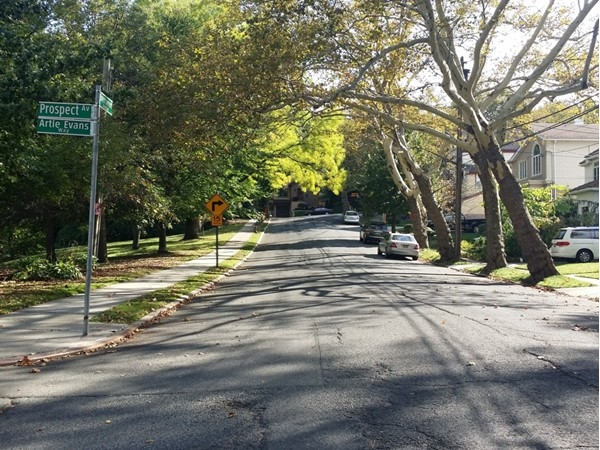 Tree lined streets gives this area of Staten Island some unique character on a sunny day