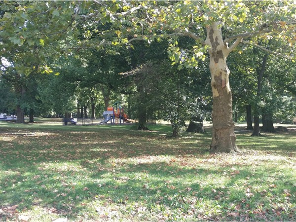 Forest Ave/ Clove Rd. Staten Island is known as 'The Borough of Parks'. Visit here to see why.