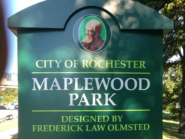 Maplewood Park is one of several gorgeous local parks located in the Maplewood neighborhood