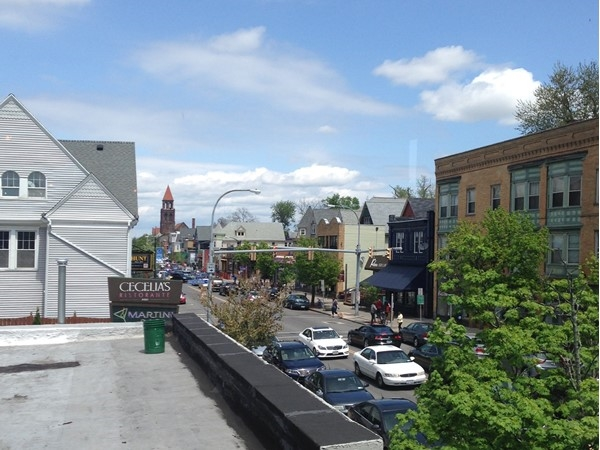 A roof top view along Buffalo's Elmwood Village