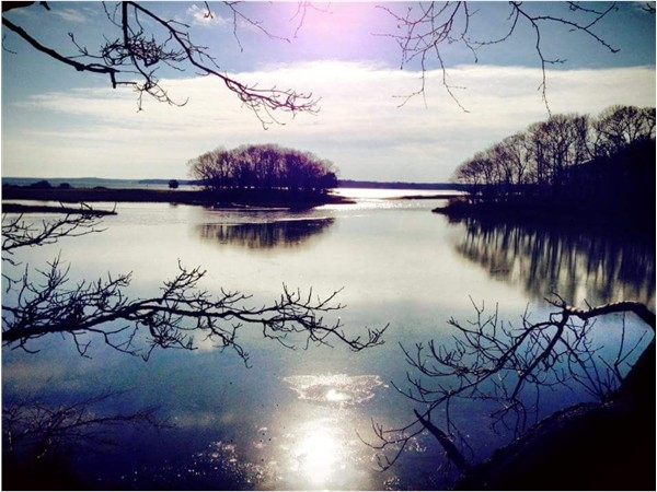 Mashomack Preserve, Shelter Island, NY