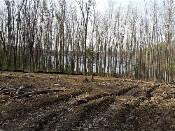 A view of Burden Lake from proposed homesite - The Woods at Burden Lake
