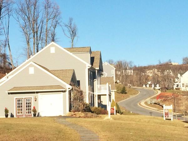 Homes in Woodbury Junction