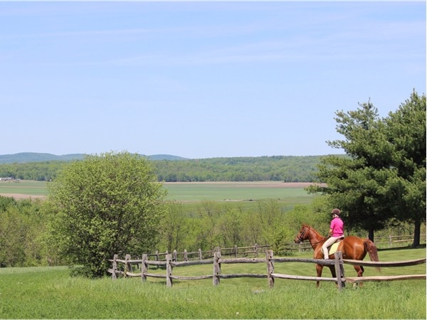 It doesn't get better than this. Horseback riding in Warwick