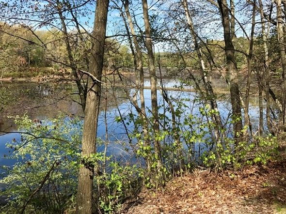 Dutchess Rail Trail. Peaceful and relaxing setting to enjoy your outdoor recreation