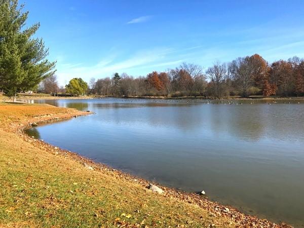 Autumn has arrived in Thomas Bull Memorial Park