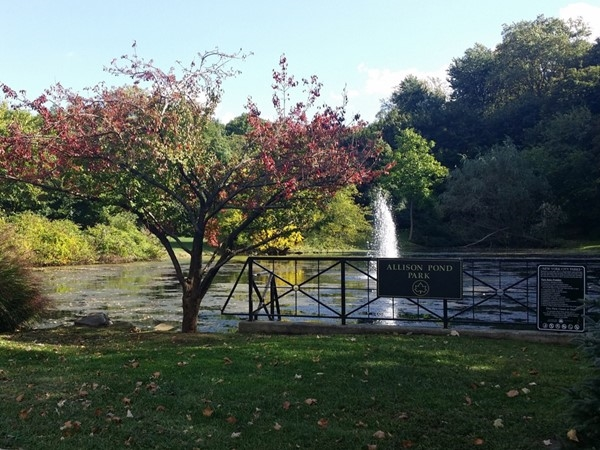 Allison Pond is tucked away in gorgeous Randall Manor