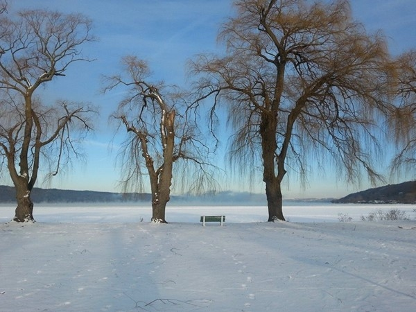 Cayuga Lake in January at Stewart Park