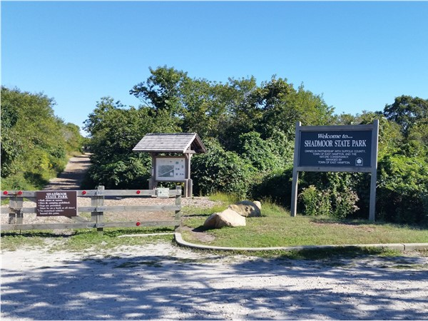 Ten miles away from Montauk Lighthouse there is a famous Shadmoor State Park