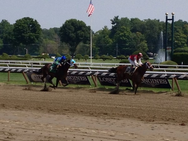 The rail view at Saratoga Race Track