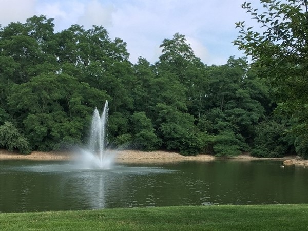 Stunning lake with fountain