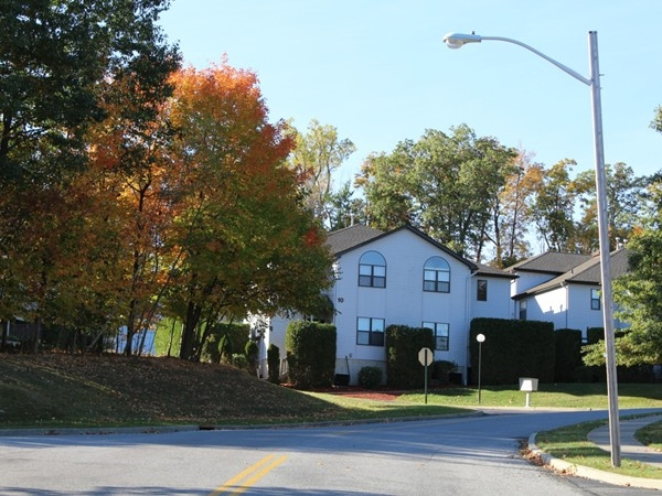 Beautiful fall day in Timber Hills