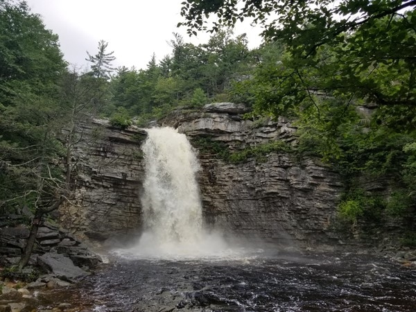 Awosting Falls in Minnewaska State Park after days of rain!  An easy hike for beginners