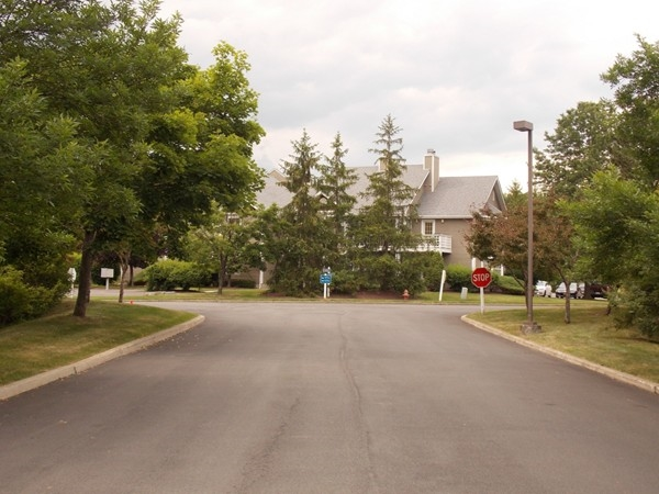 A nice shady street in Cromwell Hills Commons