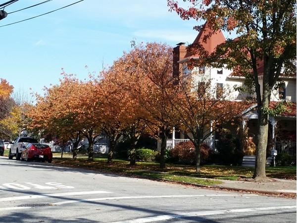 Outerbridge Avenue Staten Island Ny