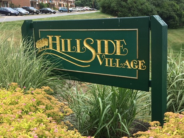 Welcome to Hillside Village