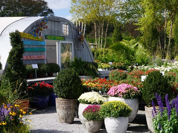 Pick up anything you need for gardening at Eastland Farm, Bridgehampton