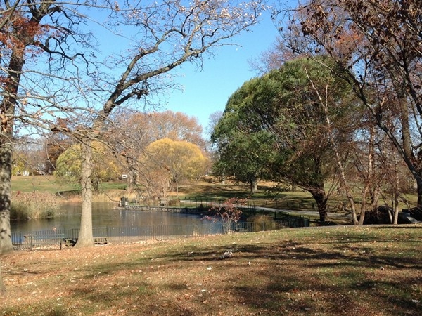 Rye Town Park overlooking the duck pond